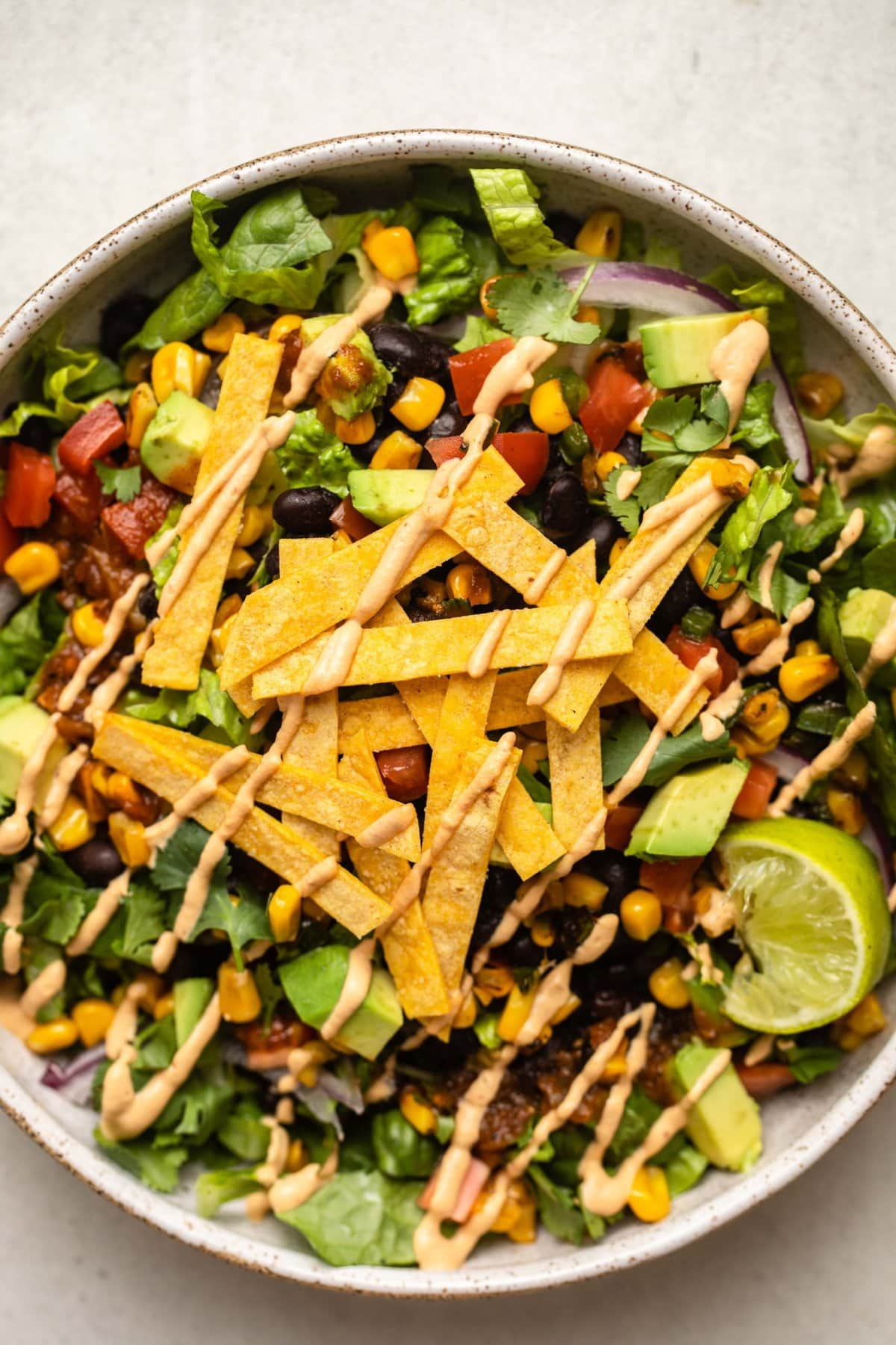 close up photo of vegan taco salad topped with baked tortilla strips and a drizzle of chipotle mayo