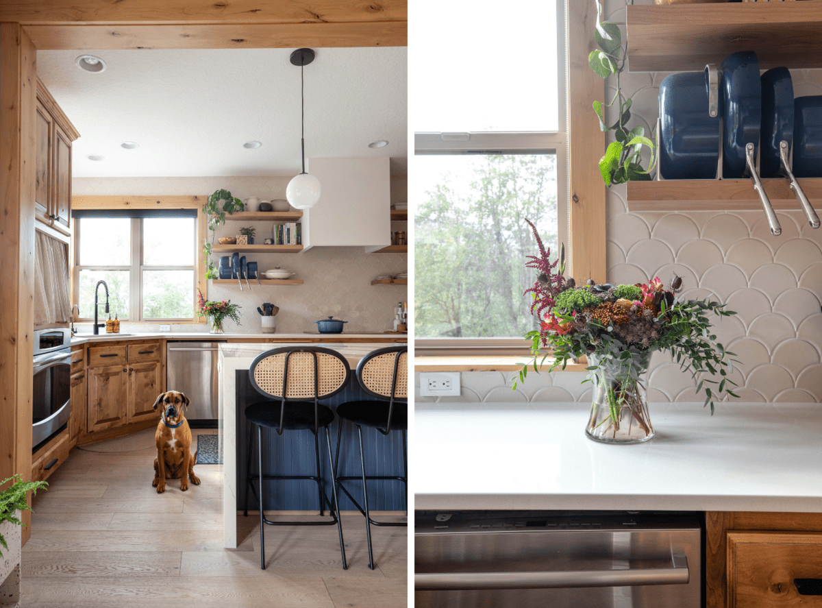 Two side-by-side photos of a dog sitting in the kitchen with a navy blue island, waterfall kitchen counter, and light filled window next to open shelving with cookbooks and pots and pans